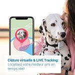 Los GPS para mascotas más vendidos en 2020