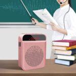 Los 10 amplificadores de Voz más vendidos en 2020
