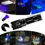 Guía de compra: las 10 mejores linternas de luz ultravioleta